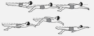 http://www.tutorialolahraga.com/2015/10/cara-belajar-renang-gaya-punggung.html