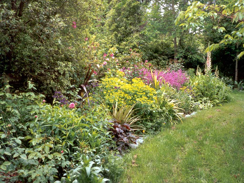 Woodland shade gardens for kaye blomeke for Flower garden borders