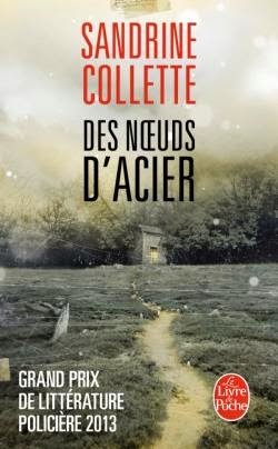 http://labibliodegaby.blogspot.fr/2014/04/des-noeuds-dacier-de-sandrine-collette.html
