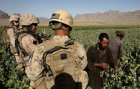 US-troops-watching-poppy-plants.jpg