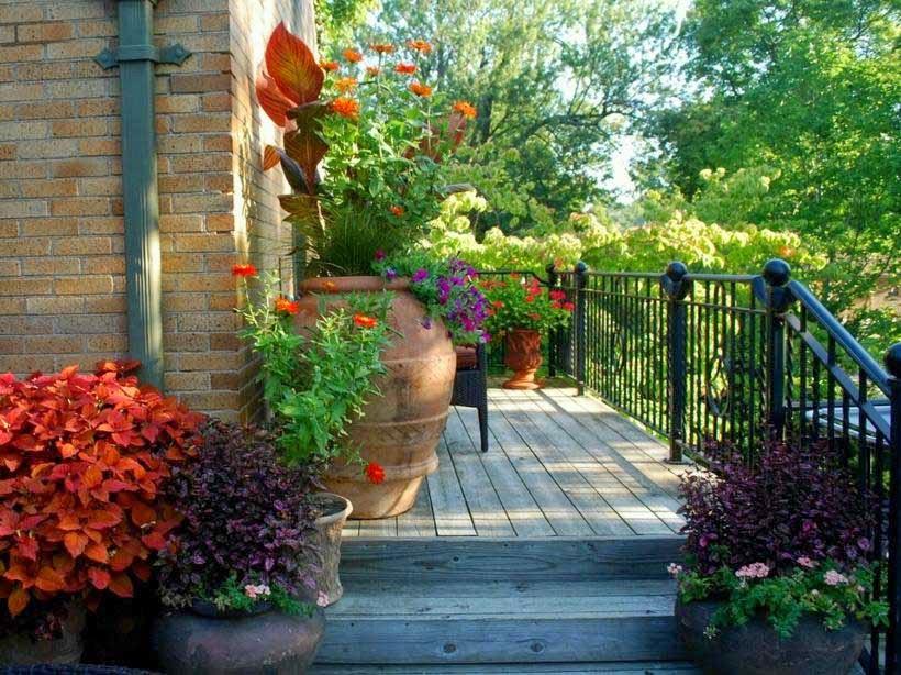 Garden-Flower-Terrace-Home-Garden-House-Modern-Minimalist