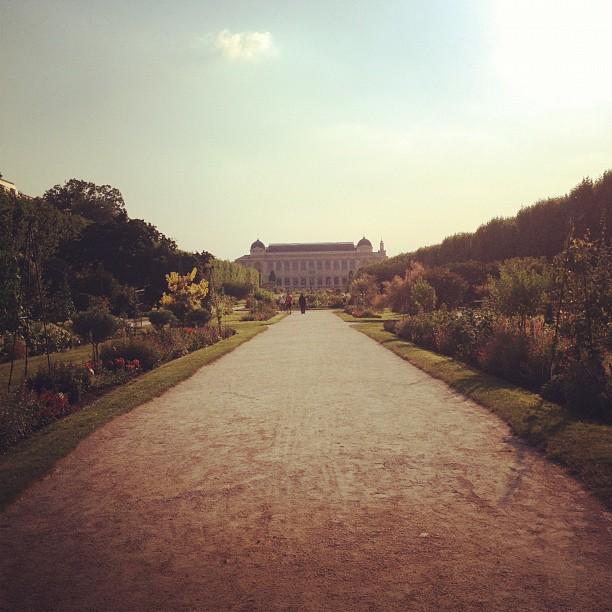 jardin de plantes, paris
