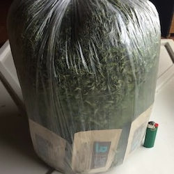 Boveda for Trim and Extract Materials