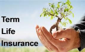 Term life insurance company
