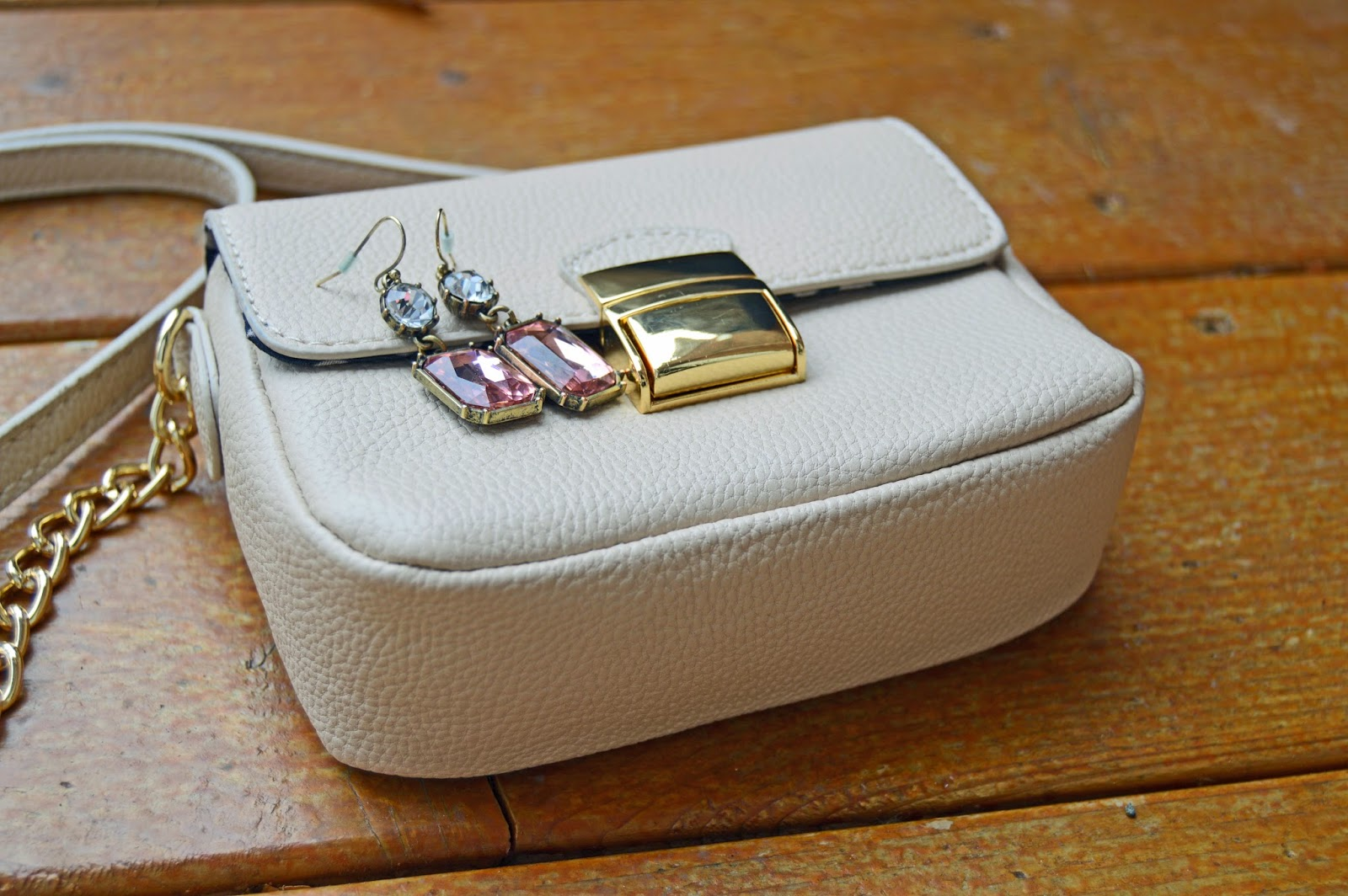 Earrings and Purse: Forever 21