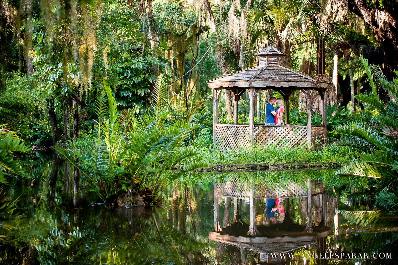 Brooke And Heath 39 S Engagement Session Washington Oaks State Park Palm Coast Fl Jacksonville