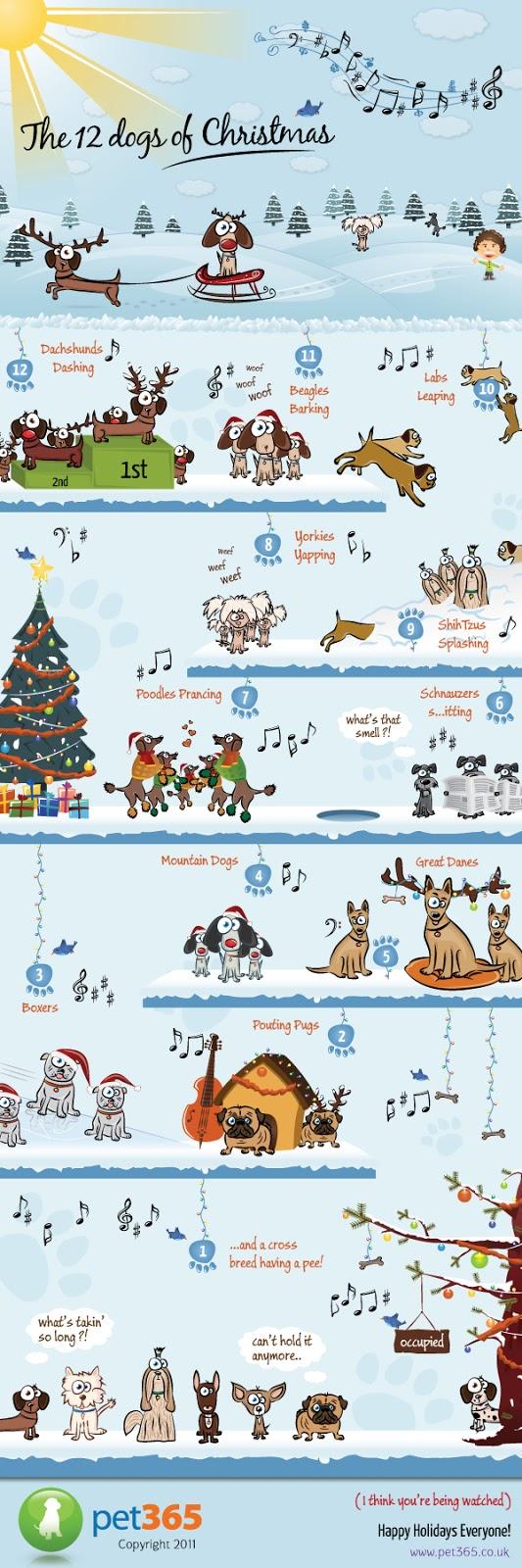 """<img src=""""Christmasinfograph.jpg"""" alt=""""Christmas Infographs"""">"""