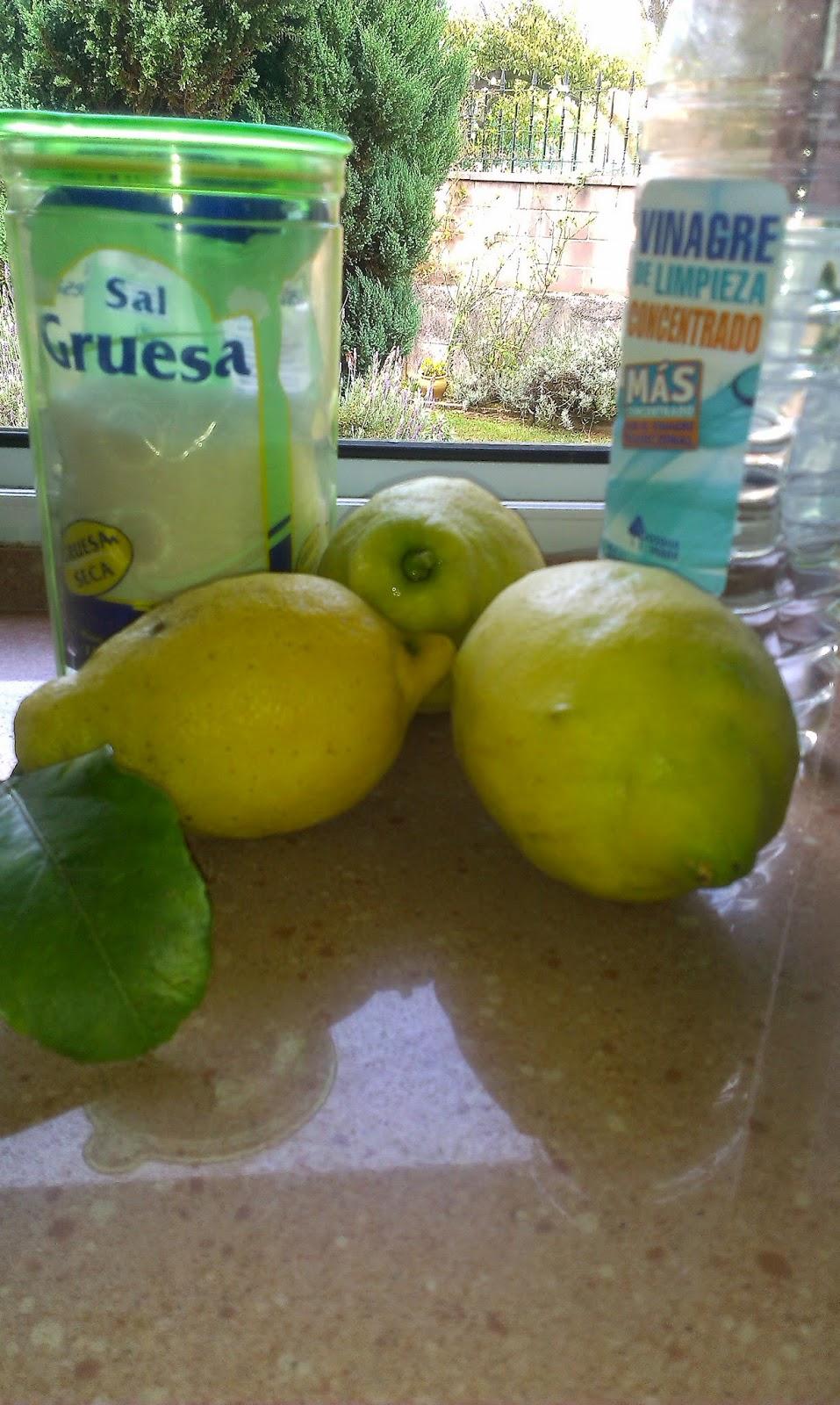 Azu cosm tica natural lavavajillas ecol gico casero y for El vinagre desinfecta