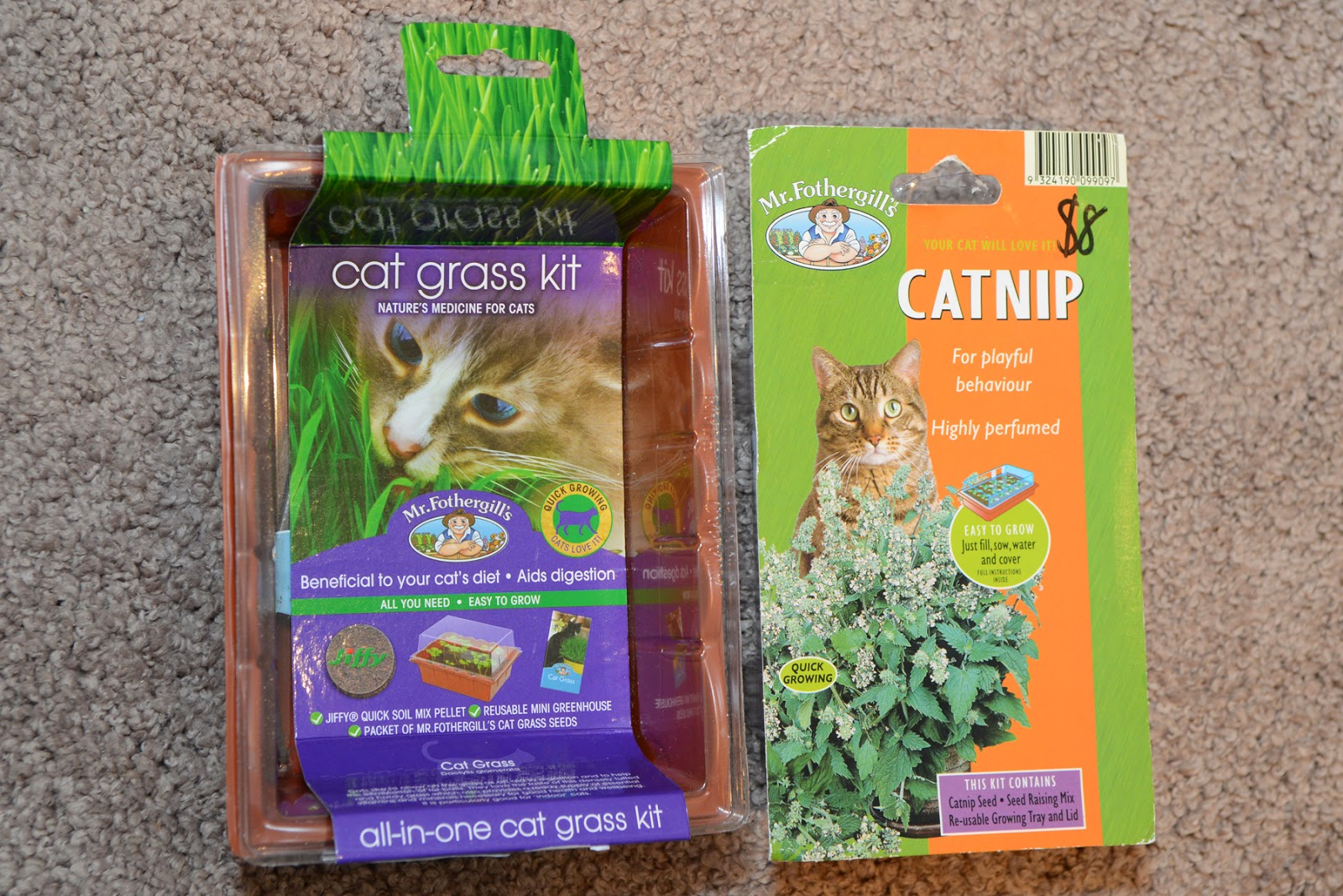 cat grass kit cat nip