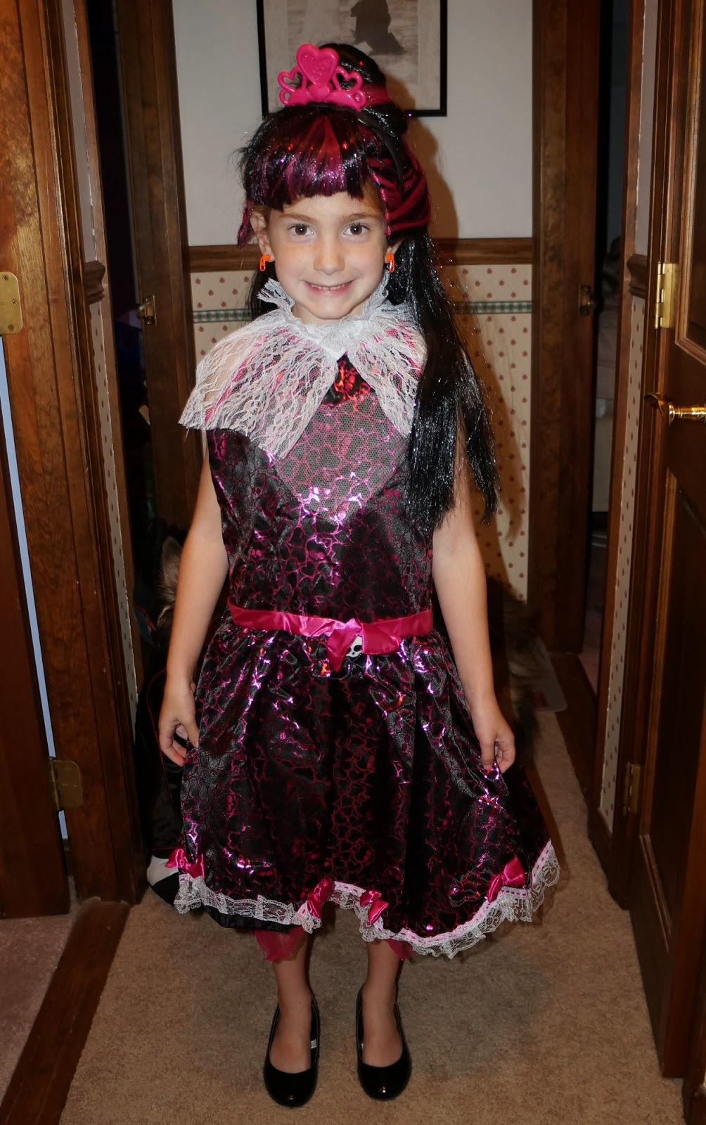 evan and lauren's cool blog: 10/11/13: monster high costume from