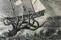 kebenaran keberadaan monster gurita raksasa
