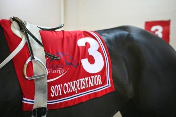 El Campeon del Caribe, SOY CONQUISTADOR