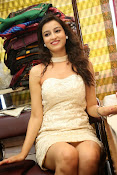 Chandini Sharma photos at IKAT Mela-thumbnail-1