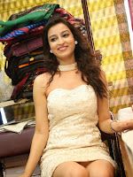 Chandini Sharma photos at IKAT Mela-cover-photo