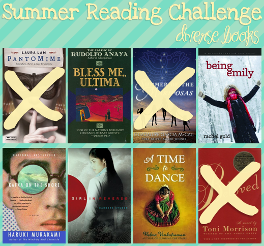Diverse Summer Reading Challenge