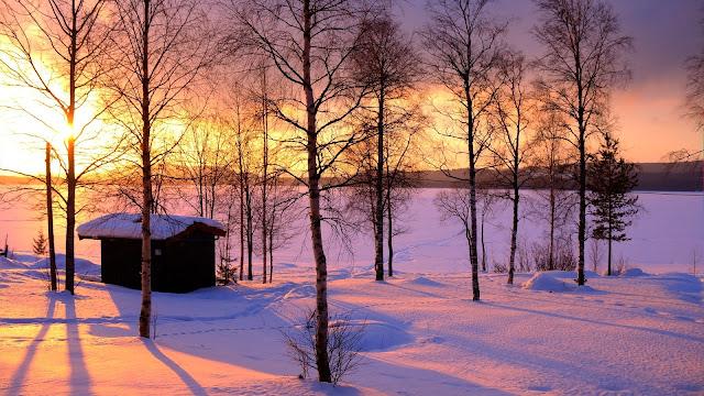 Hình ảnh đẹp về tuyết trắng
