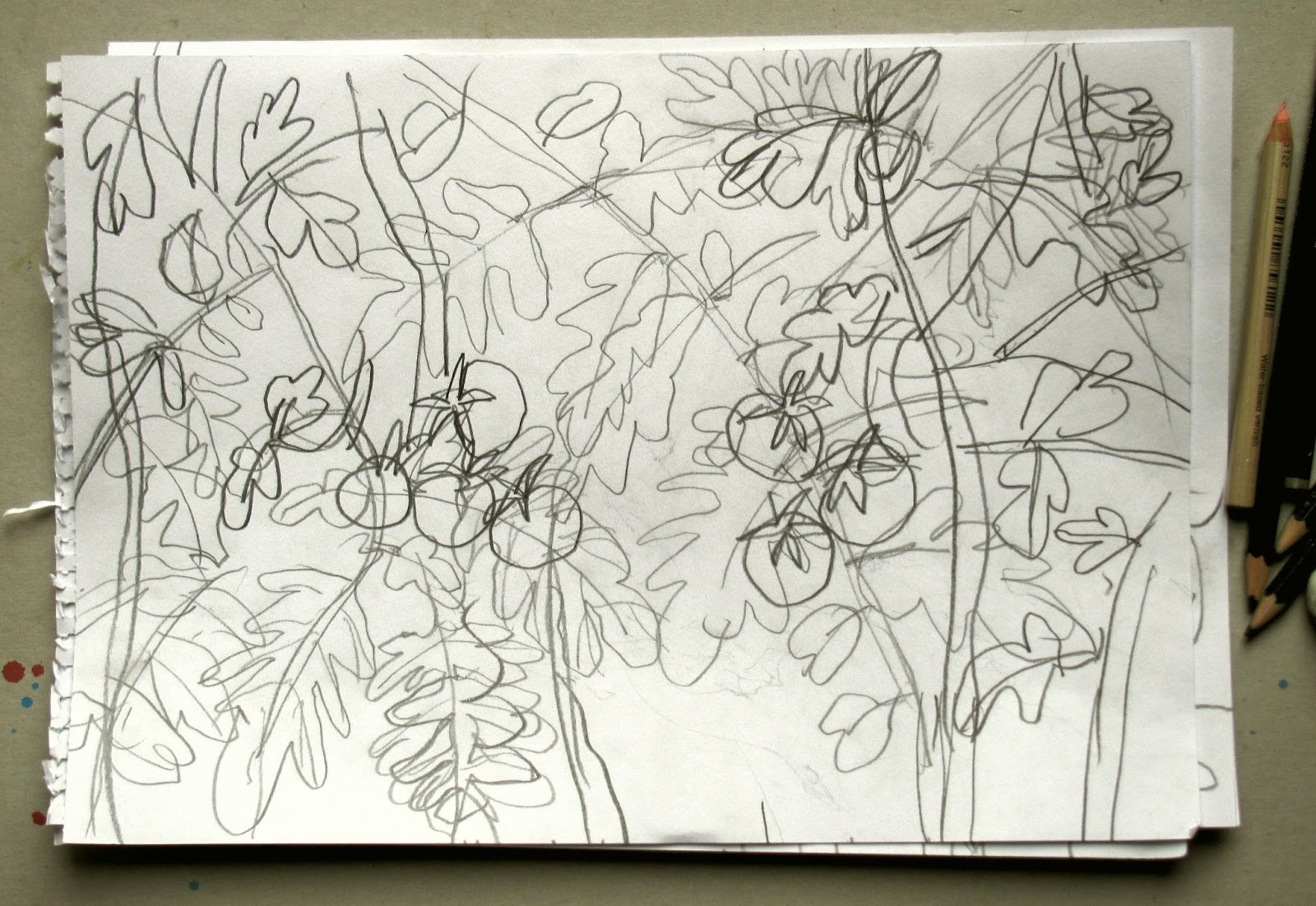 Notizen aus dem bleistiftland ich garten sehen zeichnen bleistift wind regen tomaten - Garten zeichnen ...