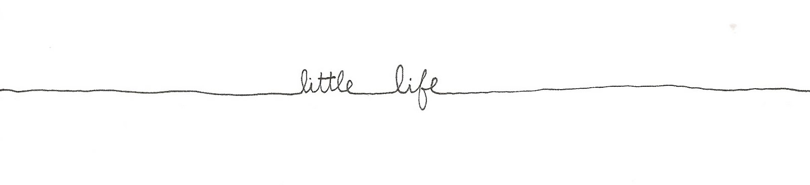 Little Life