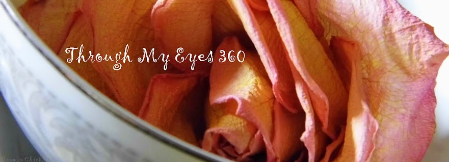 Through My Eyes 360