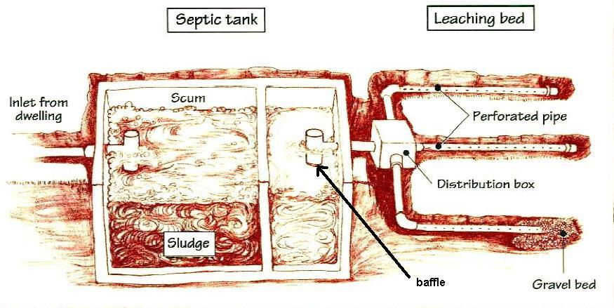 Septic systems a how to guide the basics for Septic tank basics