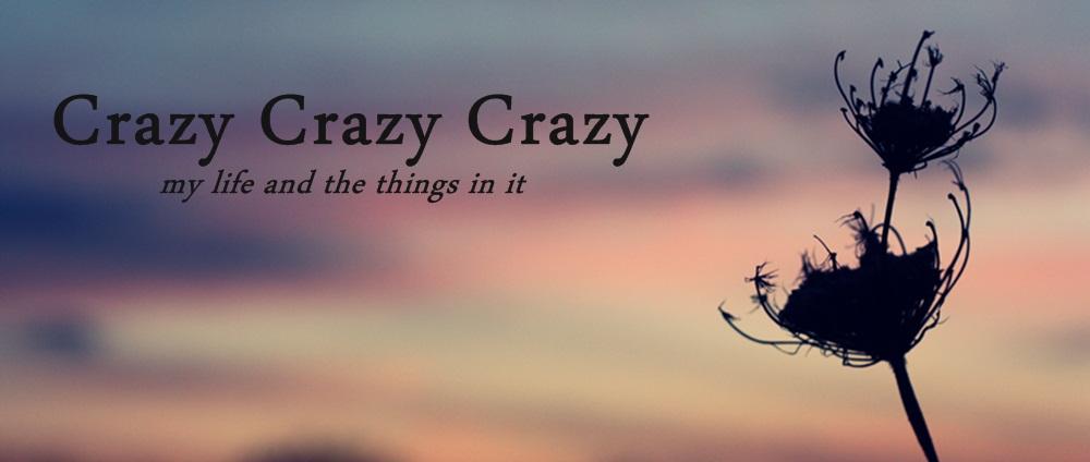 Crazy Crazy Crazy