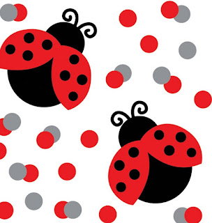 Lady Bug Theme Confetti