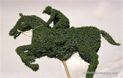 duniaandromedaku.blogspot.com - Topiary Art, Karya Seni Taman dan Tanaman yang Unik dan Menakjubkan