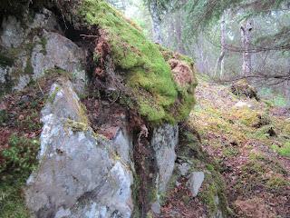 bedrock, outcropping, gold, quartz