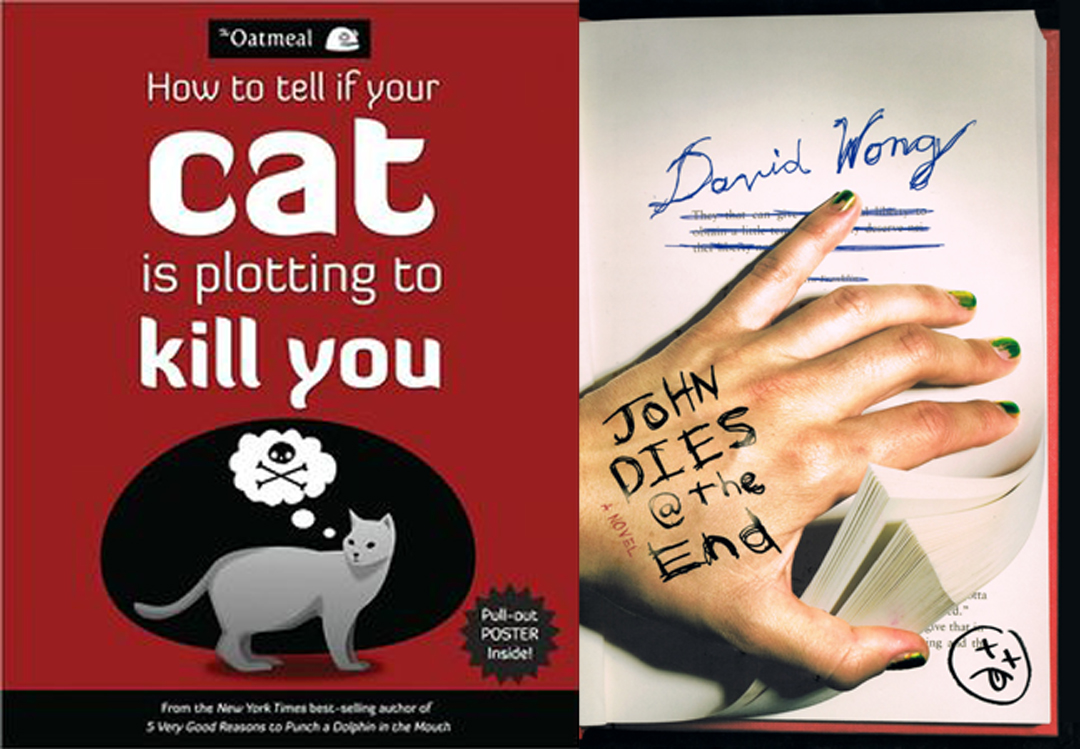 how to kill a cat Kill a kitty 2 - free online funny games if you want to blow milk out your nose, you are at the right place addictinggames delivers funny games in massive quantities.