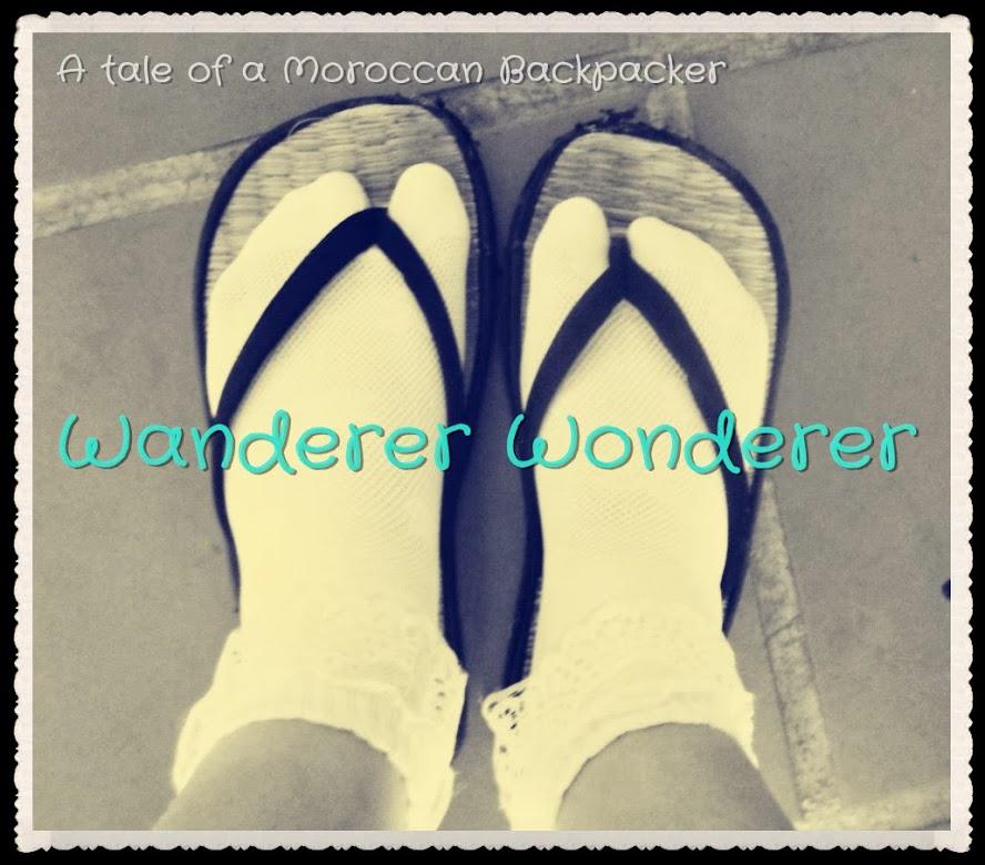 Wanderer Wonderer