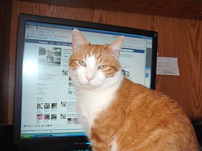 ... as this Kat quickly discovered, Shagbook is an adult 'dating' website.