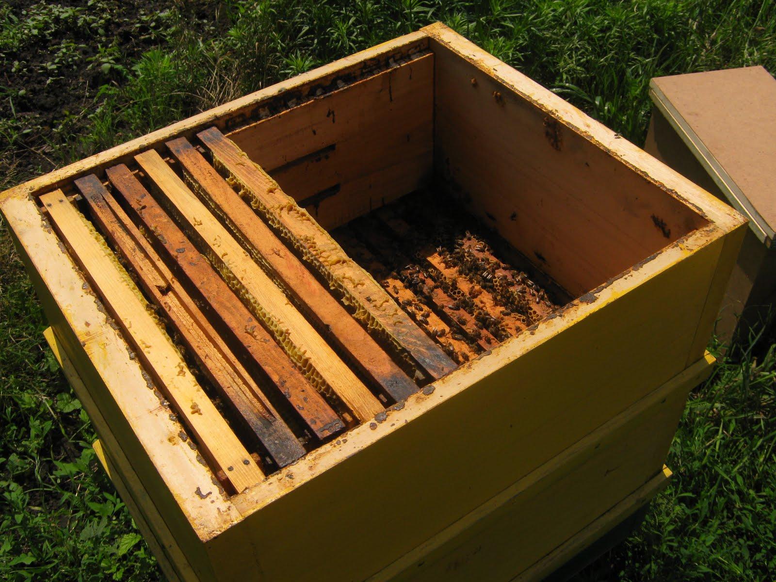 Все для пчеловодства своими руками