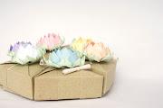 . delle scatole triangolari con fiori di loto color pastello. Eccole: