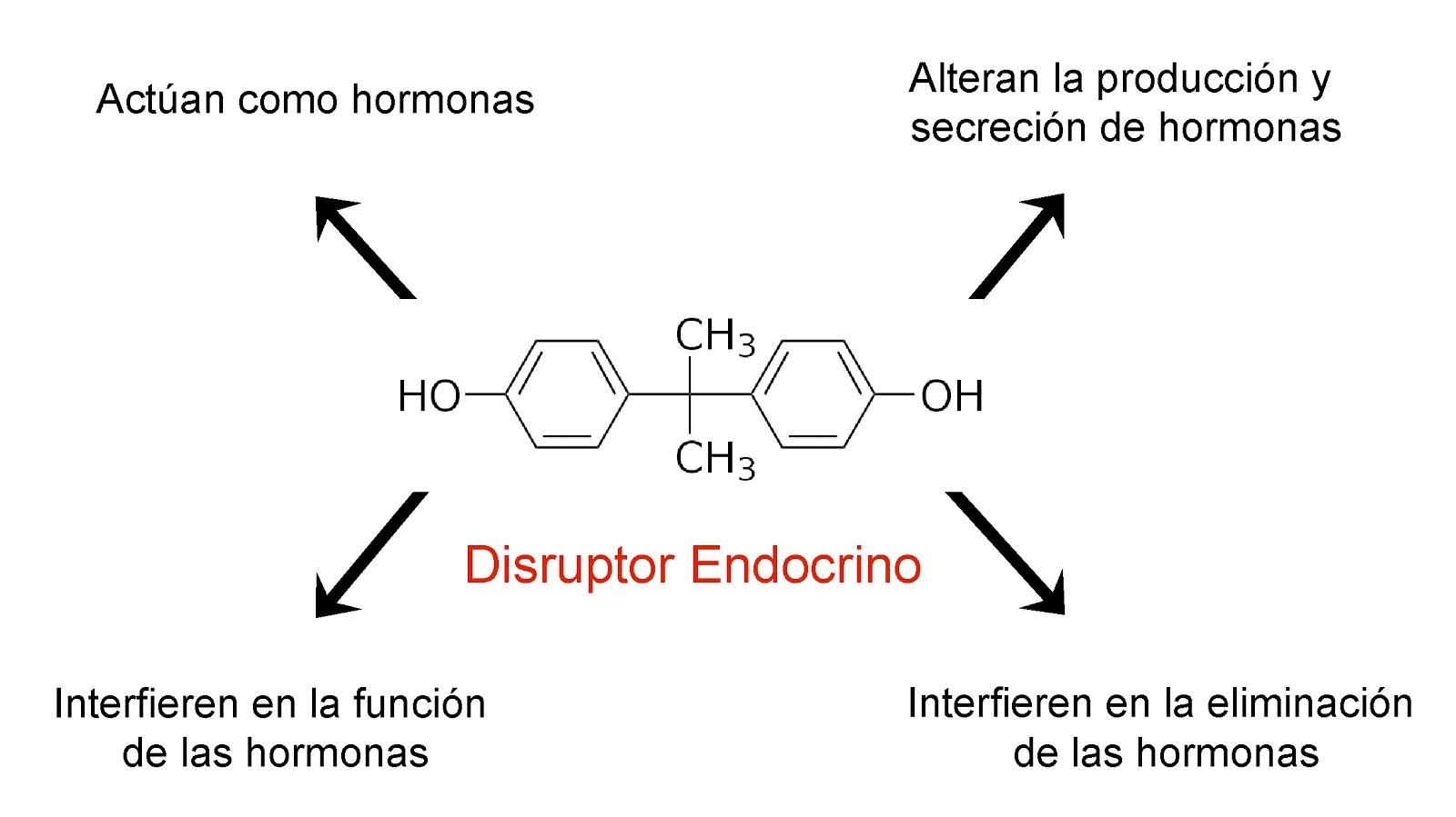 Mecanismos de acción de los disruptores endocrinos