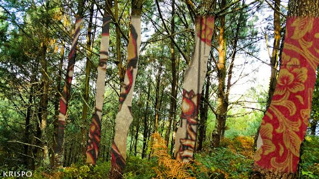 bosque con arboles pintados
