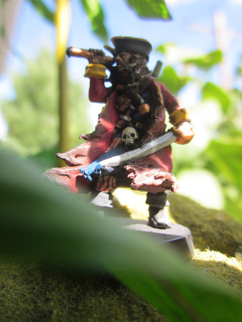 Captain or Privateer, Diamond Joe looks out at the ocean from the jungle.