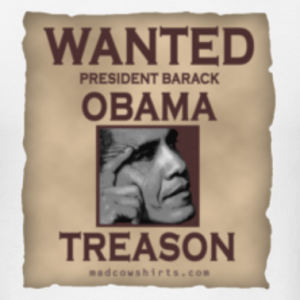 obama jailed for treason