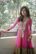 Vithika Sheru Photos at Prema Ishq Kadhal Success Meet-thumbnail-16
