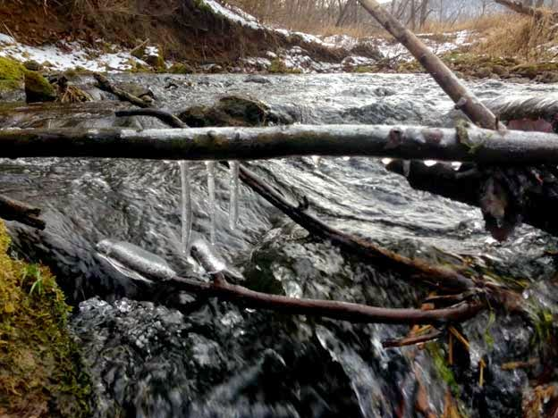 Blog chicago fly fishing outfitters january 2015 for Chicago fly fishing outfitters