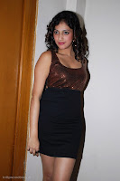 hari priya hot photos stills new gallery