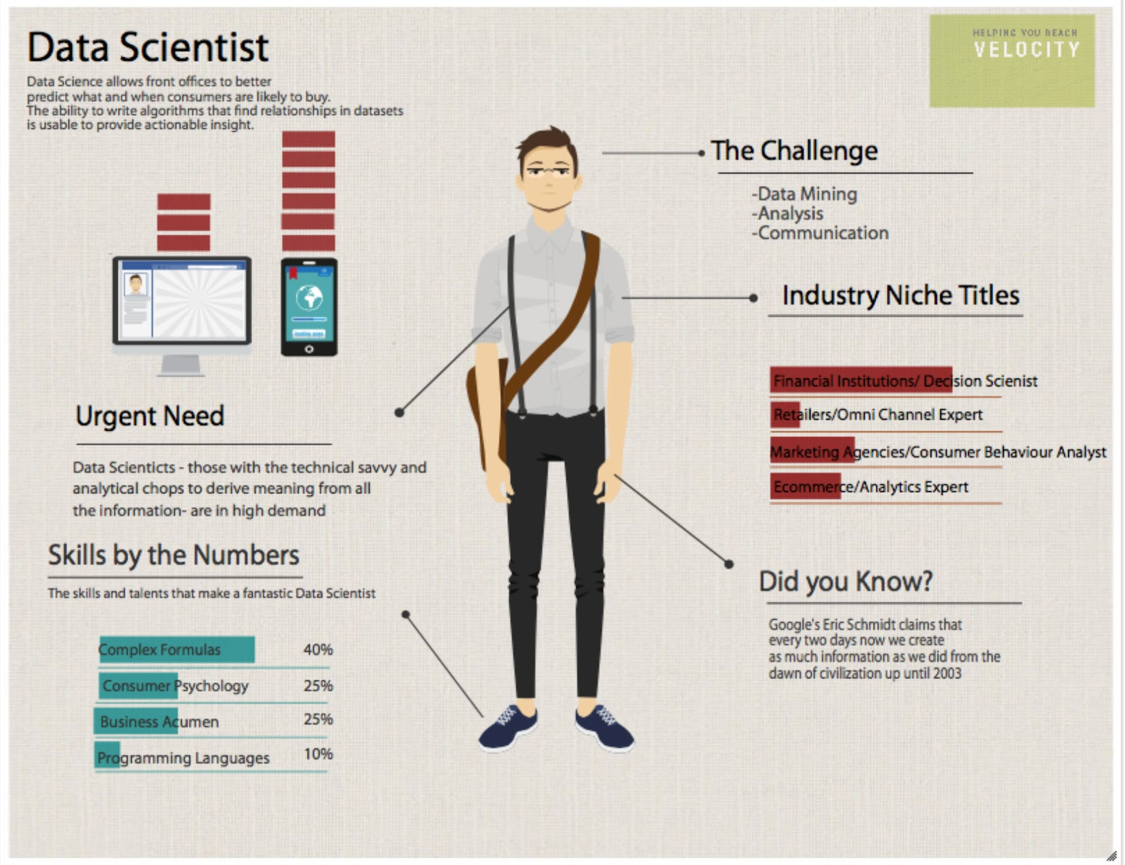 Data Analyst Infographic Resume