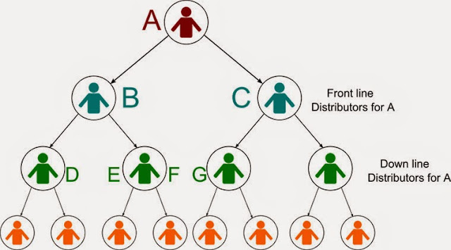 Sơ đồ mô hình nhị phân trong đa cấp