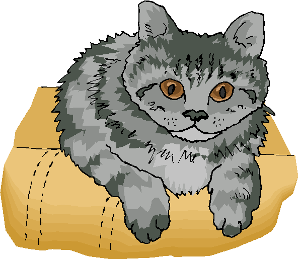 Grey Cat Sit on a Sofa Free Clipart