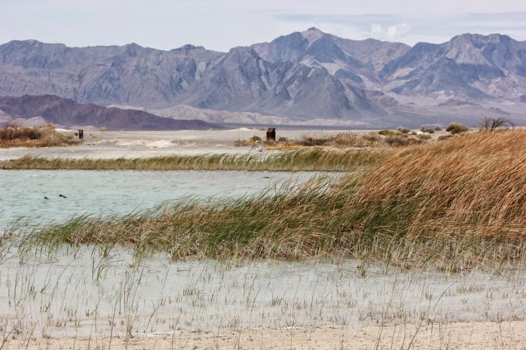 Ash Meadows Natural Wildlife Preserve Nevada