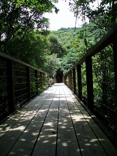 Directions to Hiji Falls