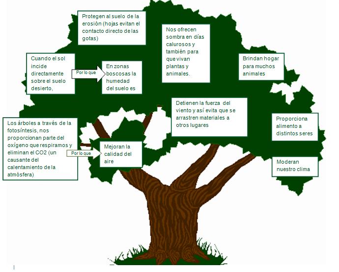 Destrucci n de los bosques y selvas tropicales for Porque son importantes los arboles wikipedia