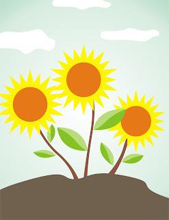 Pemandangan Bunga Matahari