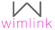 wimlink: entrepreneurship, leadership and growth for women