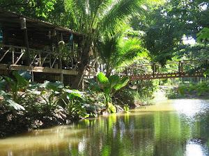 ครัวไทยเล็กๆๆที่อยูริมน้ำแห่งนี้มีตำนานอาหารอร่อยรสจัดจ้าน