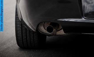 chevrolet caprice car 2013 exhaust - صور شكمان سيارة شيفروليه اكابرس 2013